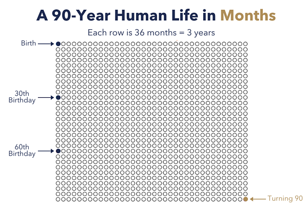 A 90 year human life in months