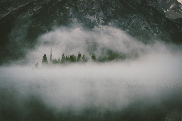 Mental fog arises after a bad or good decision