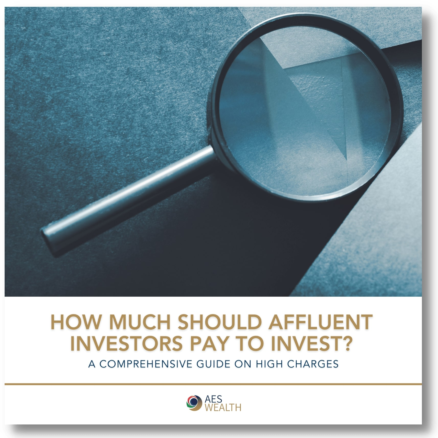 How much should affluent investors pay to invest 3d cover